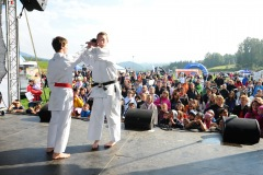Liberecký kraj dětem 2012