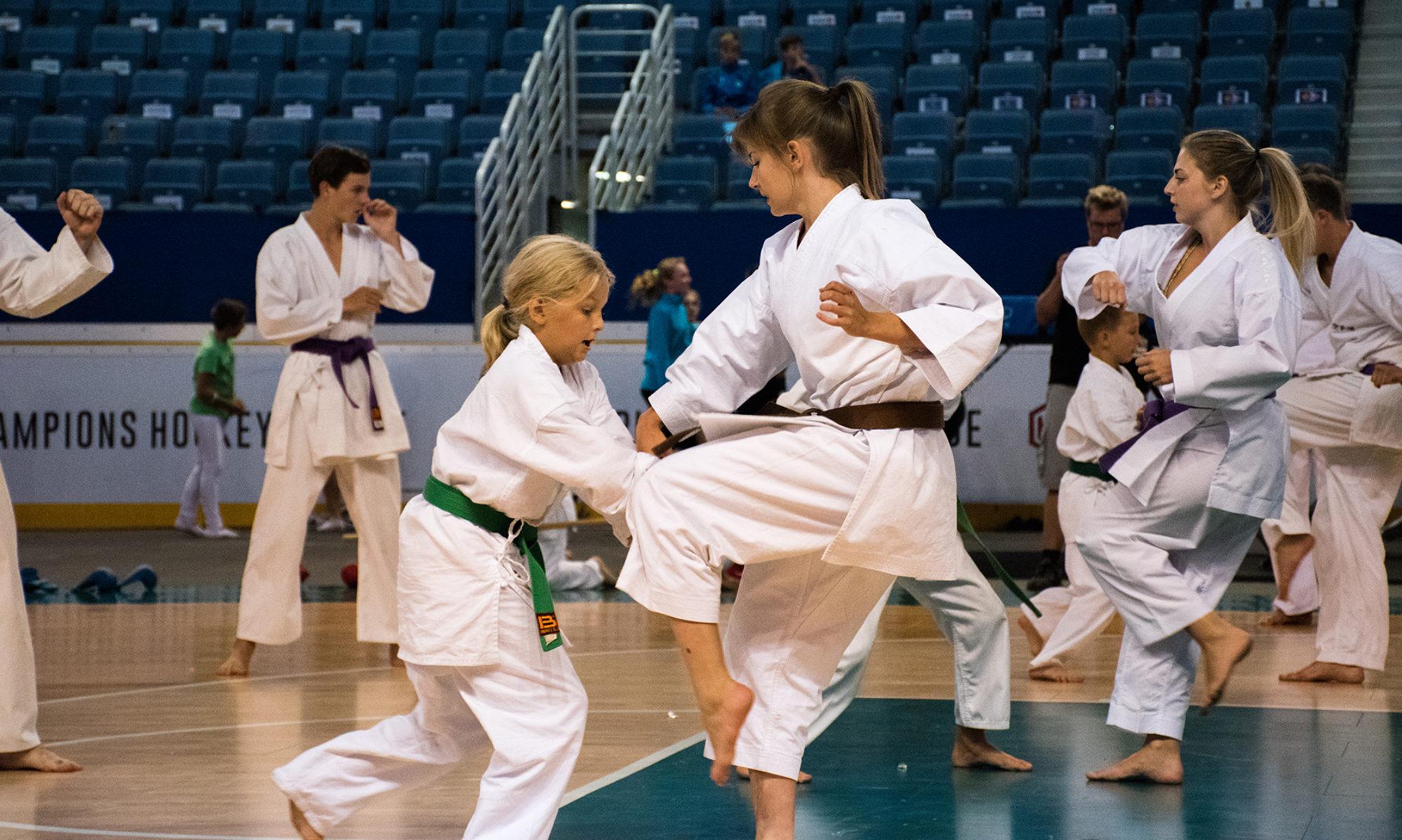 Karate Slavia Liberec